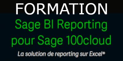 Formation Sage BI Reporting